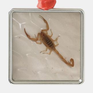 Arizona Bark Scorpion Metal Ornament