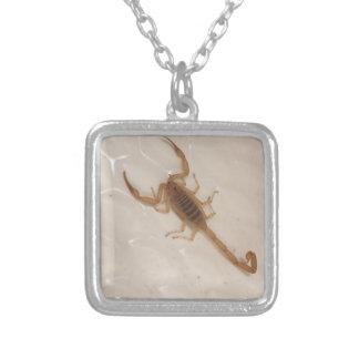 Arizona Bark Scorpion Silver Plated Necklace