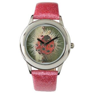 Arizona Cactus Bloom Watch