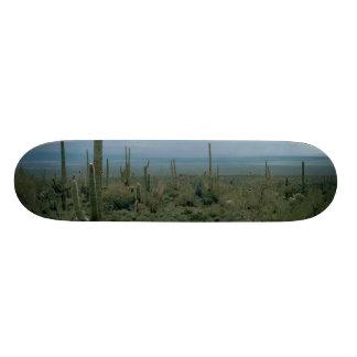 Arizona Desert and Cactuses Skate Board Deck