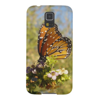 arizona desert monarch butterfly galaxy s5 case