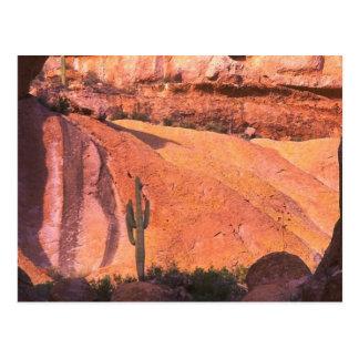 Arizona Desert Postcard