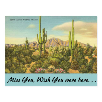 Arizona, Giant Cactus Postcard