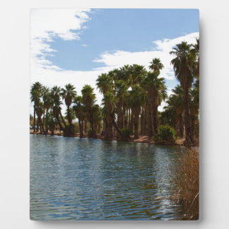 Arizona Lake Plaque