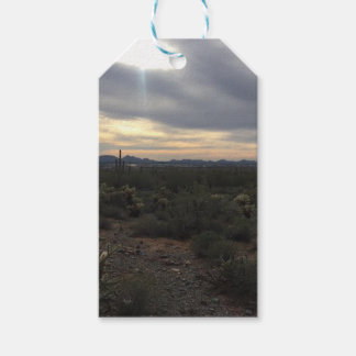 Arizona Landscape Pack Of Gift Tags