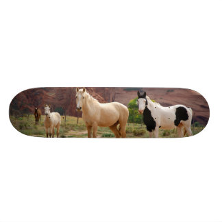 Arizona, Navajo Indian Reservation, Chinle, Custom Skateboard