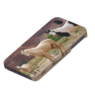 Arizona, Navajo Indian Reservation, Chinle, iPhone 4 Case