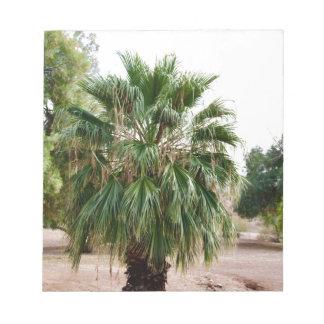 Arizona Palm Notepad