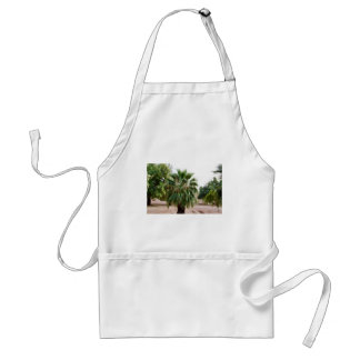 Arizona Palm Standard Apron