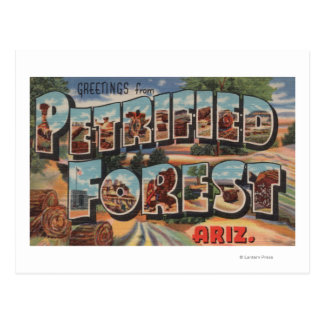 Arizona - Petrified Forest - Large Letter Postcard