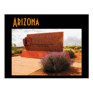 Arizona (Petrified Forest) Postcard