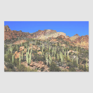 Arizona Saguaro Cactus Rectangular Stickers x4