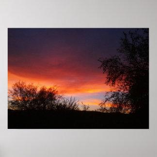 Arizona Sonoran Desert Sunset 21 x 15 Poster