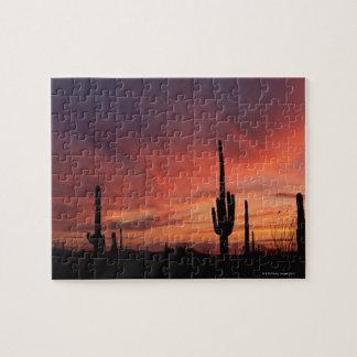 Arizona sunset over saguaro cacti puzzles