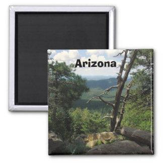 Arizona Views Square Magnet