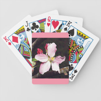 Arkansas Apple Blossom Bicycle Playing Cards