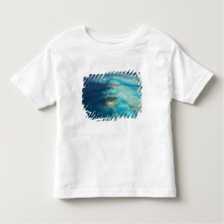 Arlington Reef, Great Barrier Reef Marine Park, Shirts