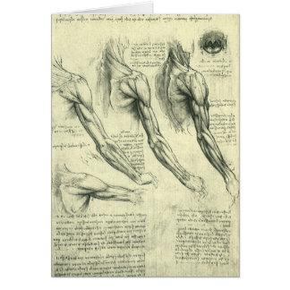 Arm and Shoulder Anatomy by Leonardo da Vinci Card