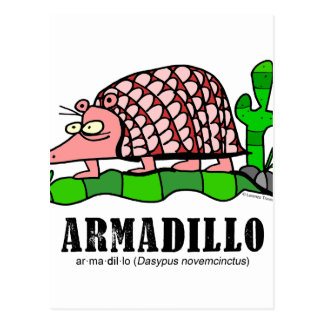 Armadillo by Lorenzo Postcard