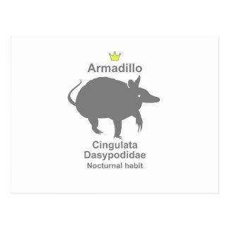 Armadillo g5 postcard
