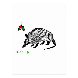 Armadillo Kiss Me Postcard