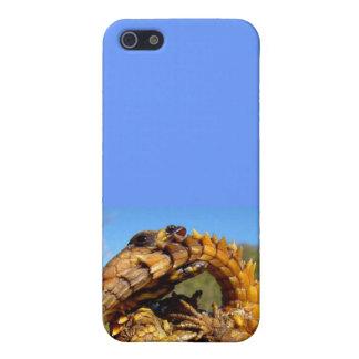 Armadillo Lizard Iphone Case