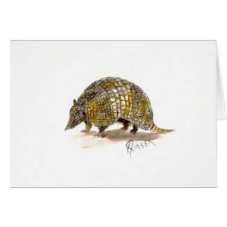 Armadillo Note card
