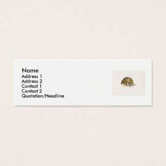 Armadillo profile/ business card