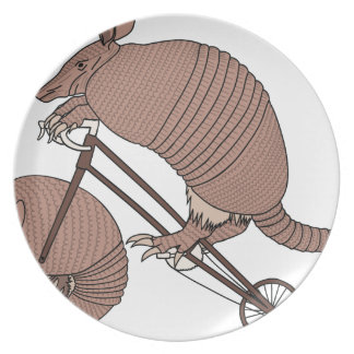 Armadillo Riding Bike With Armadillo Wheel Plate