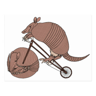 Armadillo Riding Bike With Armadillo Wheel Postcard