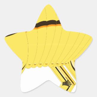 Armadillo Star Sticker