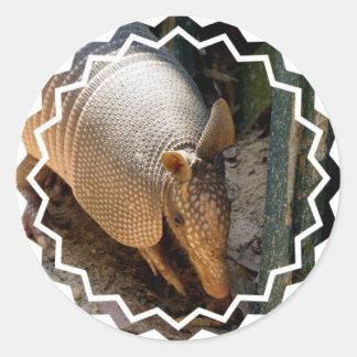 Armadillo Stickers