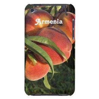 Armenian Apricots iPod Touch Case
