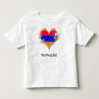 Armenian Toddler Fine Jersey T-Shirt