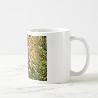 Armeria maritima pink sea growing on a cliff coffee mug