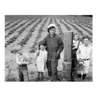 Arnold Family's New Farm - 1939 Postcard
