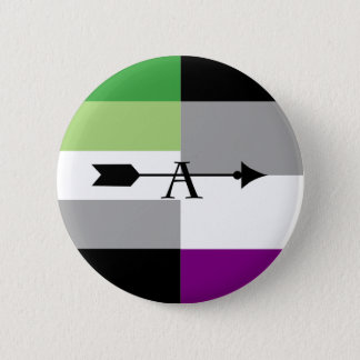 Aromantic Asexual Aro Ace Pin
