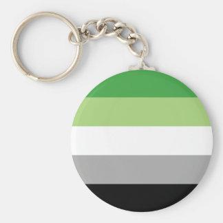 aromantic flag keychain