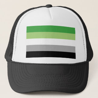 Aromantic flag trucker hat