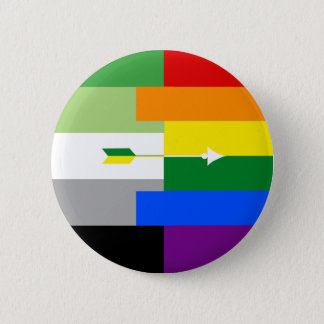Aromantic Homosexual Pin