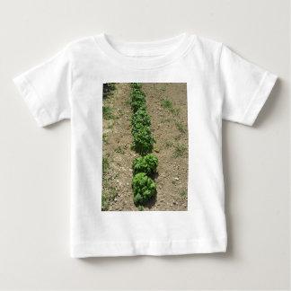 Array of basil varieties t shirts