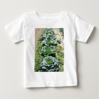 Array of cabbages baby T-Shirt