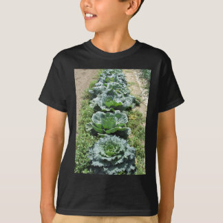 Array of cabbages T-Shirt