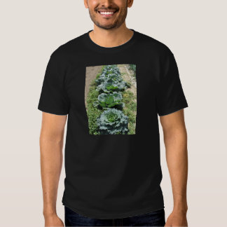 Array of cabbages t shirts