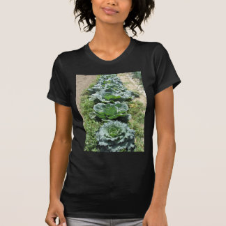 Array of cabbages tee shirt
