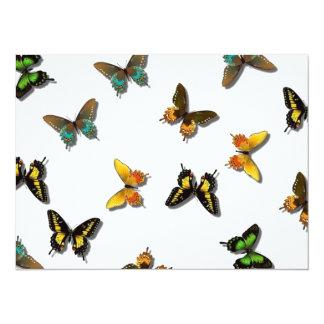 Arrière - plan mignon de papillon carton d'invitation  13,97 cm x 19,05 cm