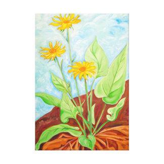 Arrow Leaf Balsam Root Canvas Print