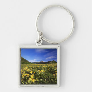 Arrowleaf balsomroot covers the praire with Silver-Colored square keychain