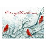 Art cardinal rouge d'oiseaux de carte postale de J
