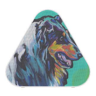 Art de bruit coloré lumineux de colley rugueux haut-parleur bluetooth